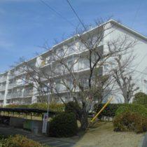 中古マンション 関屋あしびハイツ 5棟204号室